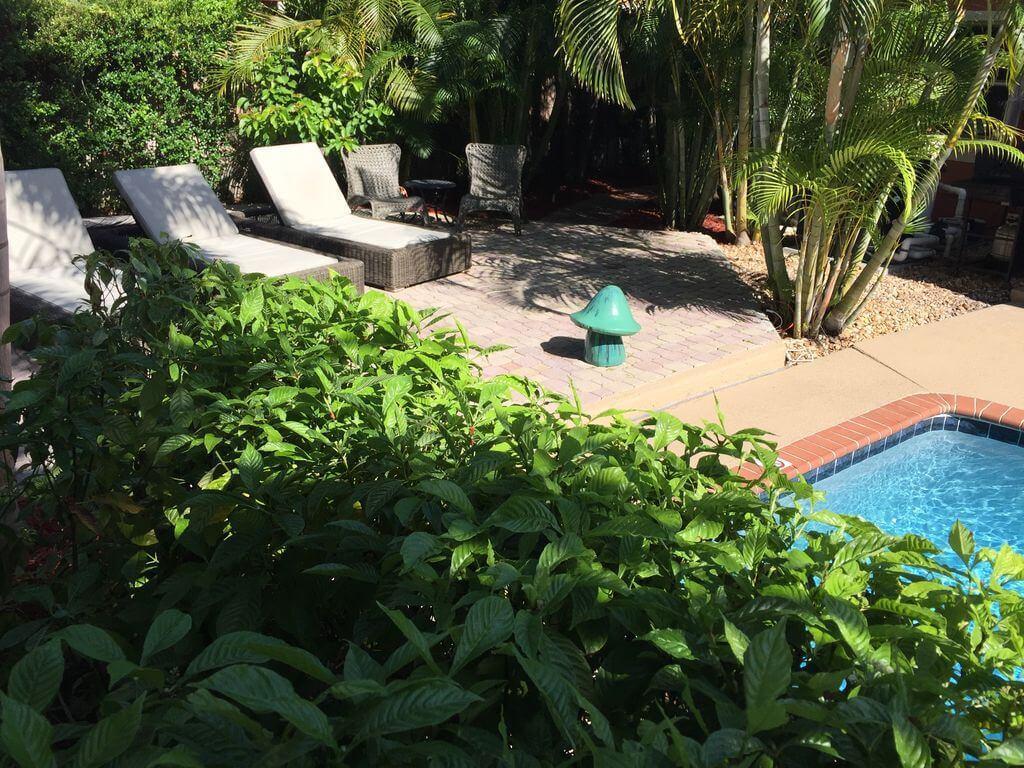 Dům v tropickém ráji